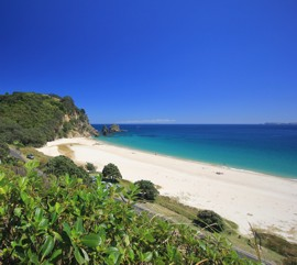 relax at Kuaotunu Chalets holiday accommodation private and self contained Coromandel NZ